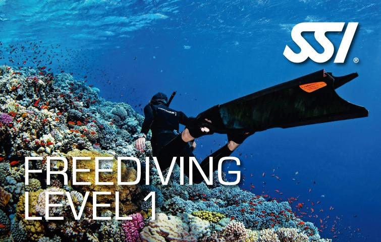 freediving level one