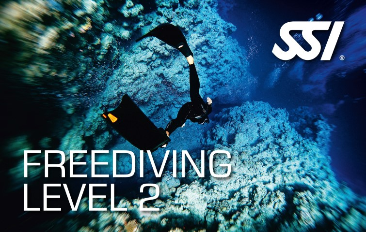 freediving level two