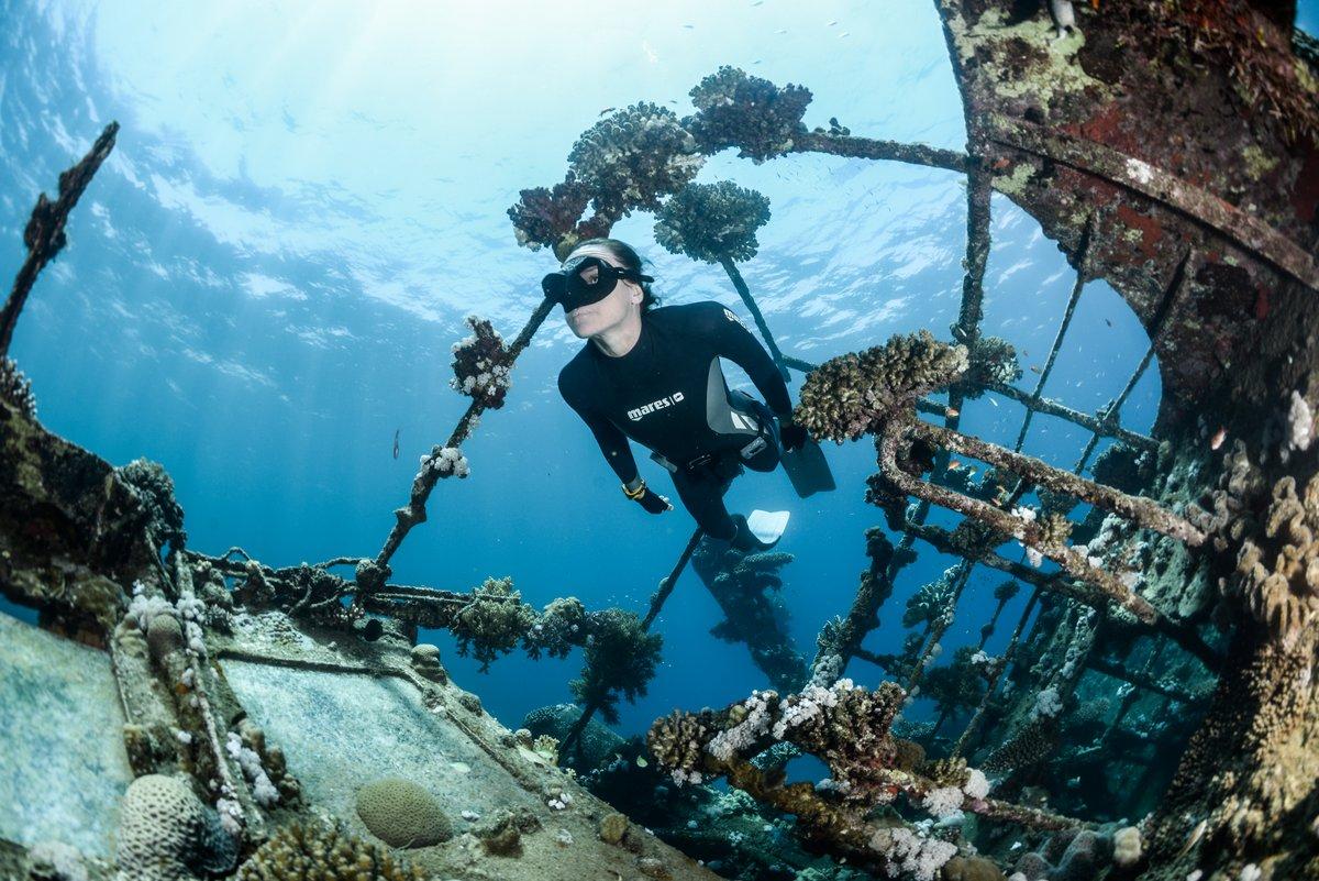 Freediver swimming through wreck