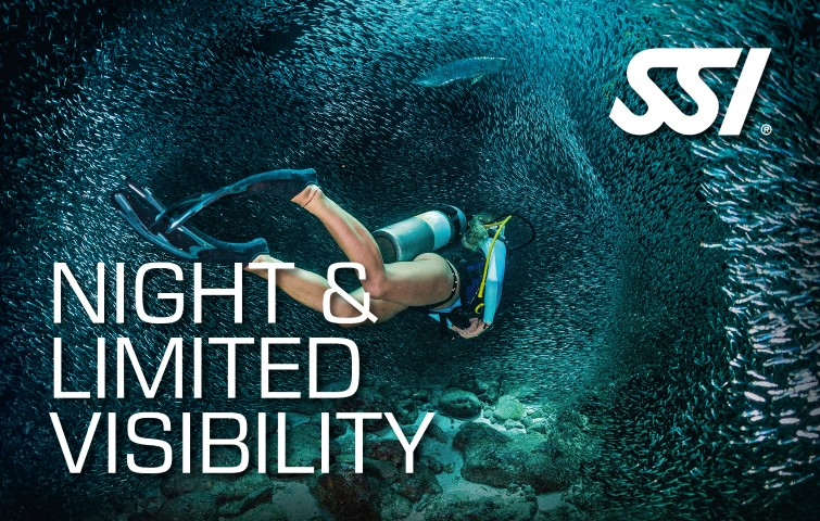 night visibility diving