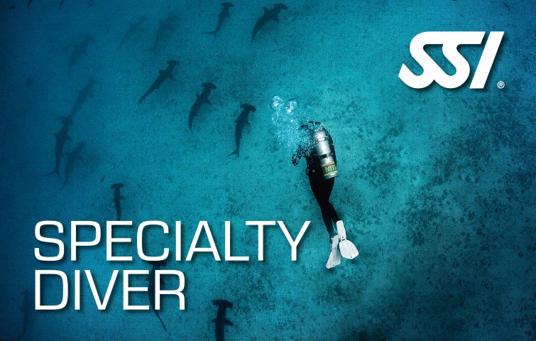 speciliaty diving