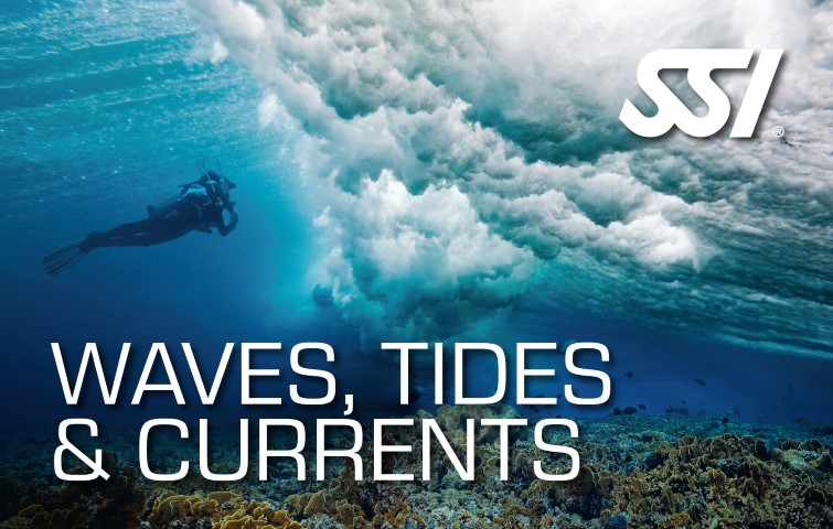 SSI Waves, Tides and Currents certification card