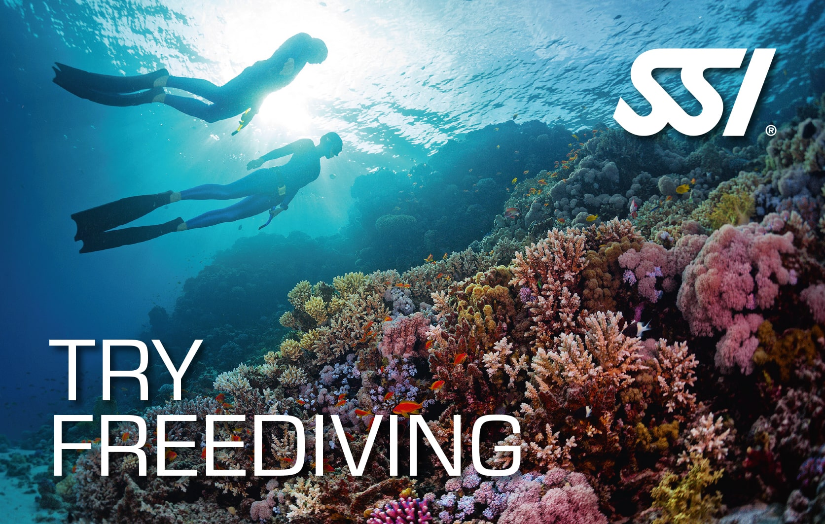 SSI Try Freediving certification card